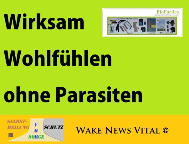 Wirksam Wohlfühlen ohne Parasiten - BioParRes + Vital